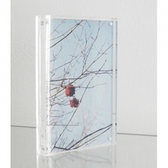 Jahresausstellung - unterm Baum