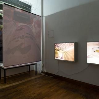 show case - Galerie