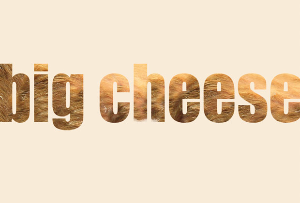 10067 bigcheese